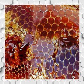 Saját márkás mézek