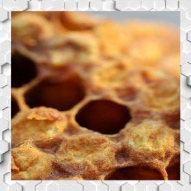 Méhpempős étrendkiegészítők