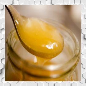 Méhpempős mézek
