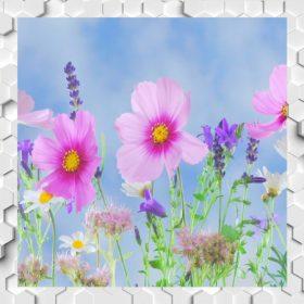 Virágok mézei M-Zs
