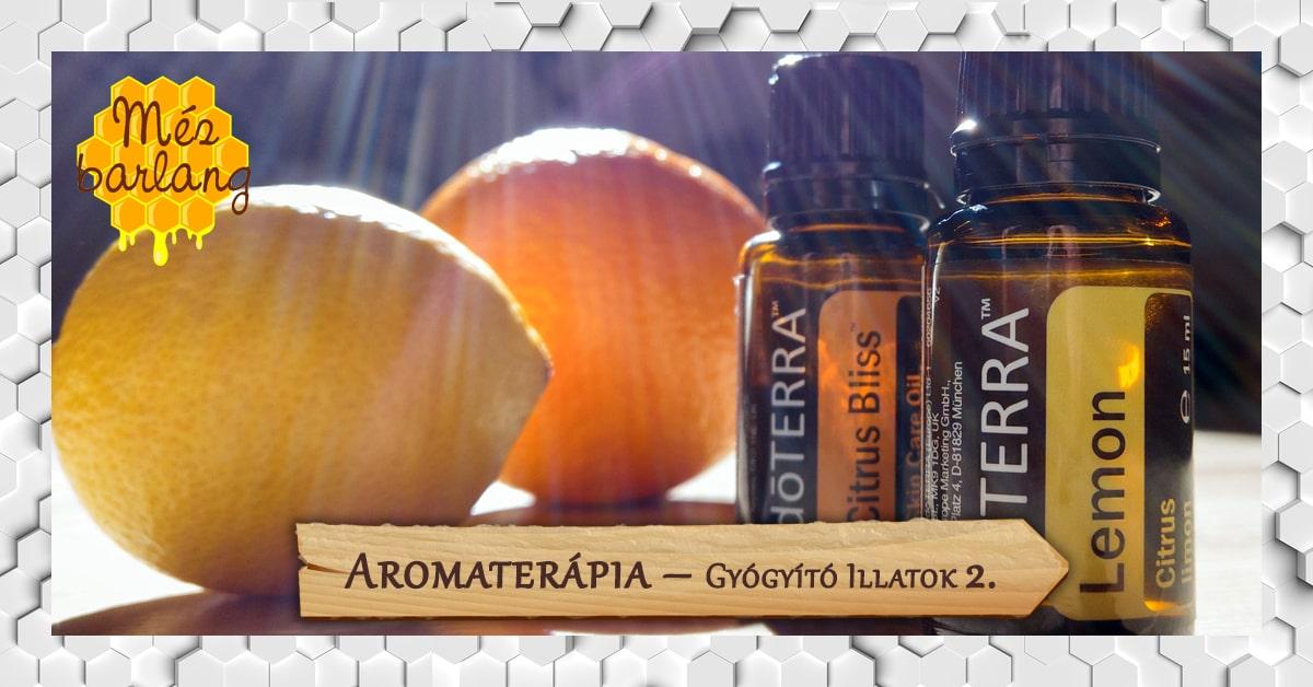 Aromaterápia – Gyógyító illatok (2. rész)