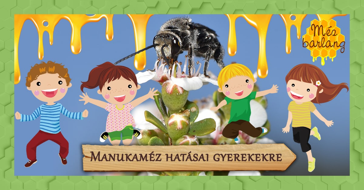 Manukaméz hatásai gyerekekre (vevővélemények)