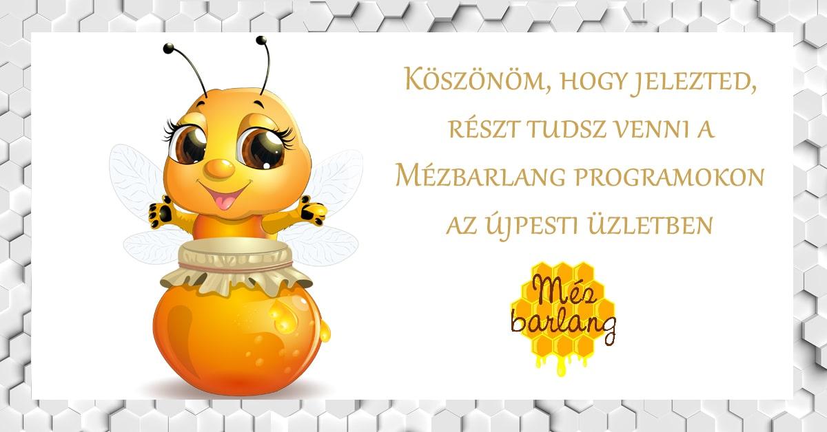 Örülök, hogy részt tudsz venni a Mézbarlang programokon :)