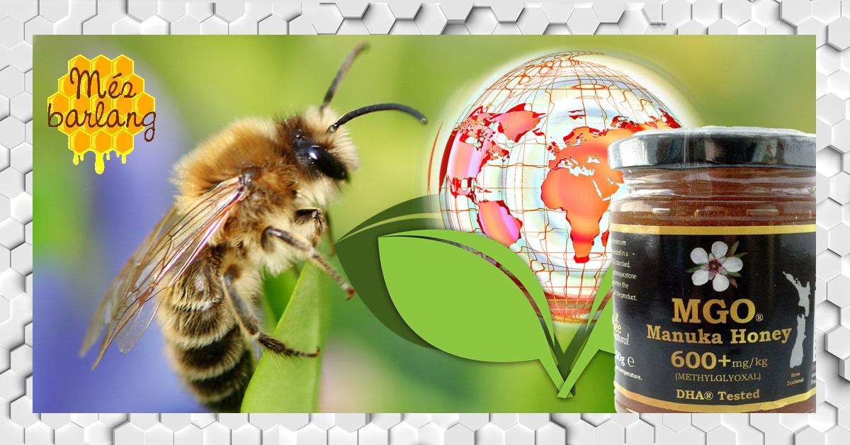 Környezetvédelem és műanyagmentesség Mézbarlang-módra